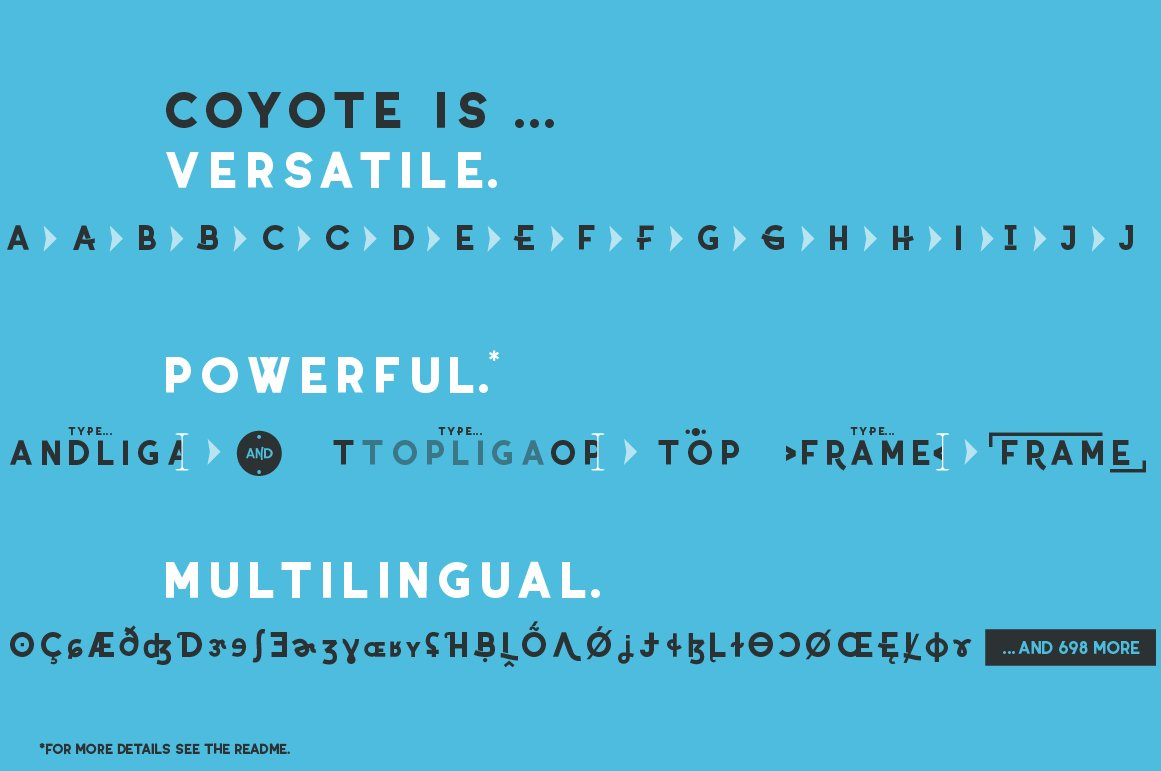 Coyote - a crazy & retro font family with optional stencils example image 3