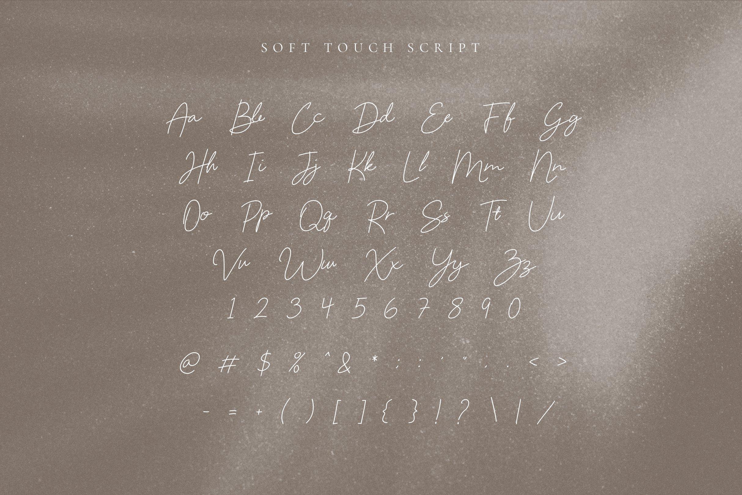 Soft Touch Signature Script Font example image 7