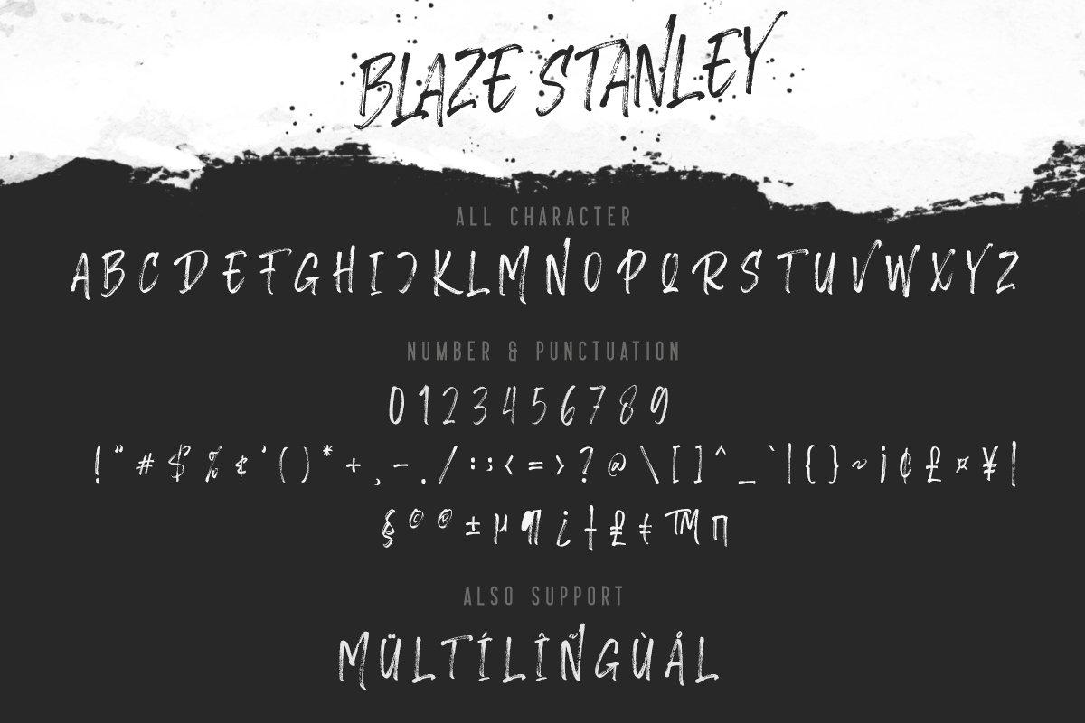 Blaze Stanley - Brush Font example image 6