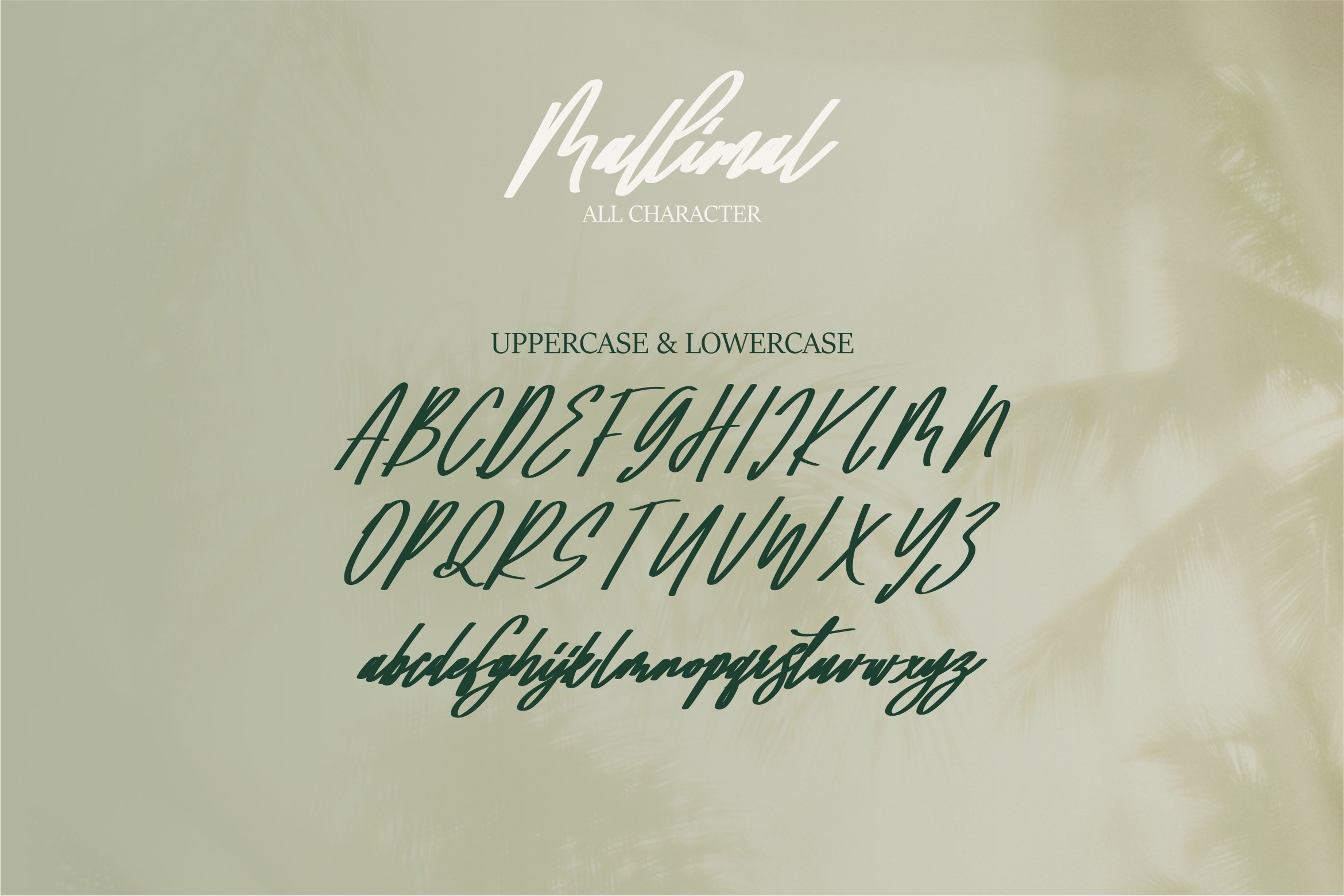 Mallimal - A Bold Signature Font example image 3