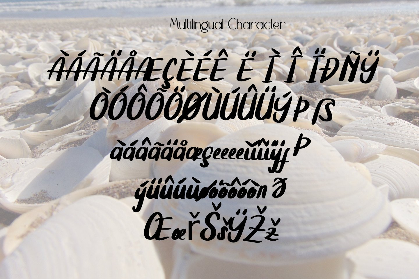Summer Clam Stunning Font example image 9