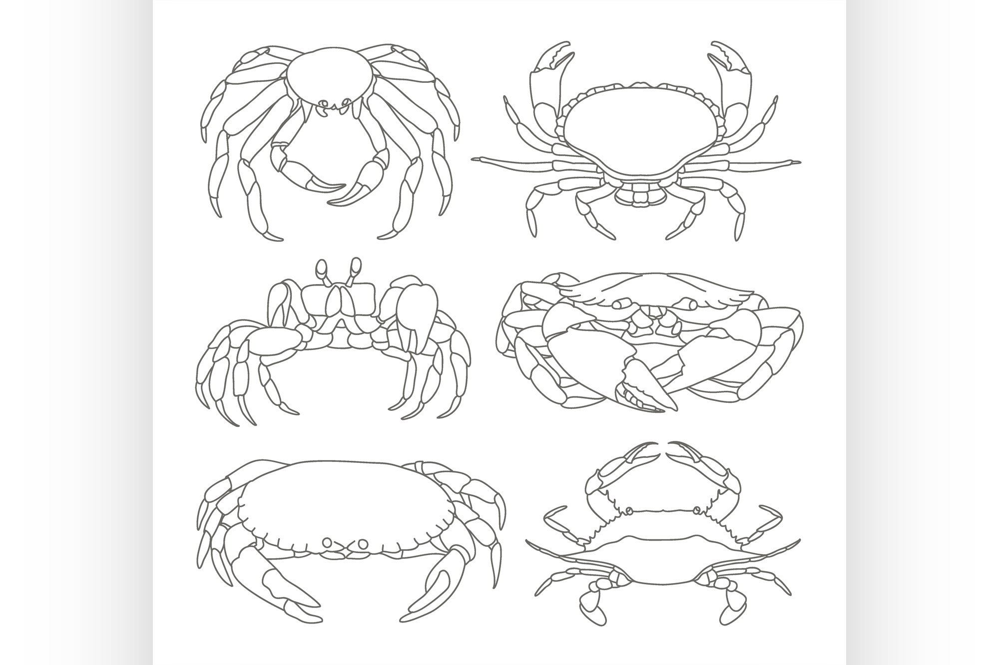Set of vector crab icons example image 1