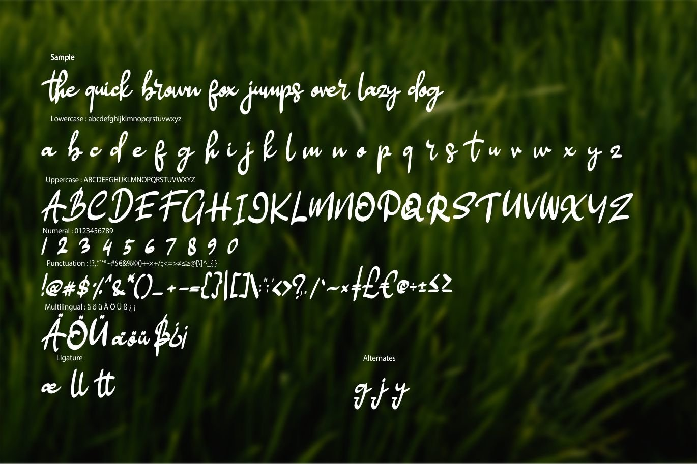 Hellow | Modern Style Script Font example image 6