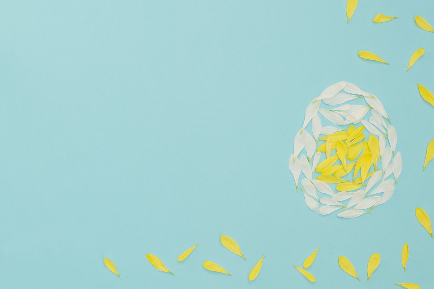 Easter egg made of yellow and white flower petals example image 1