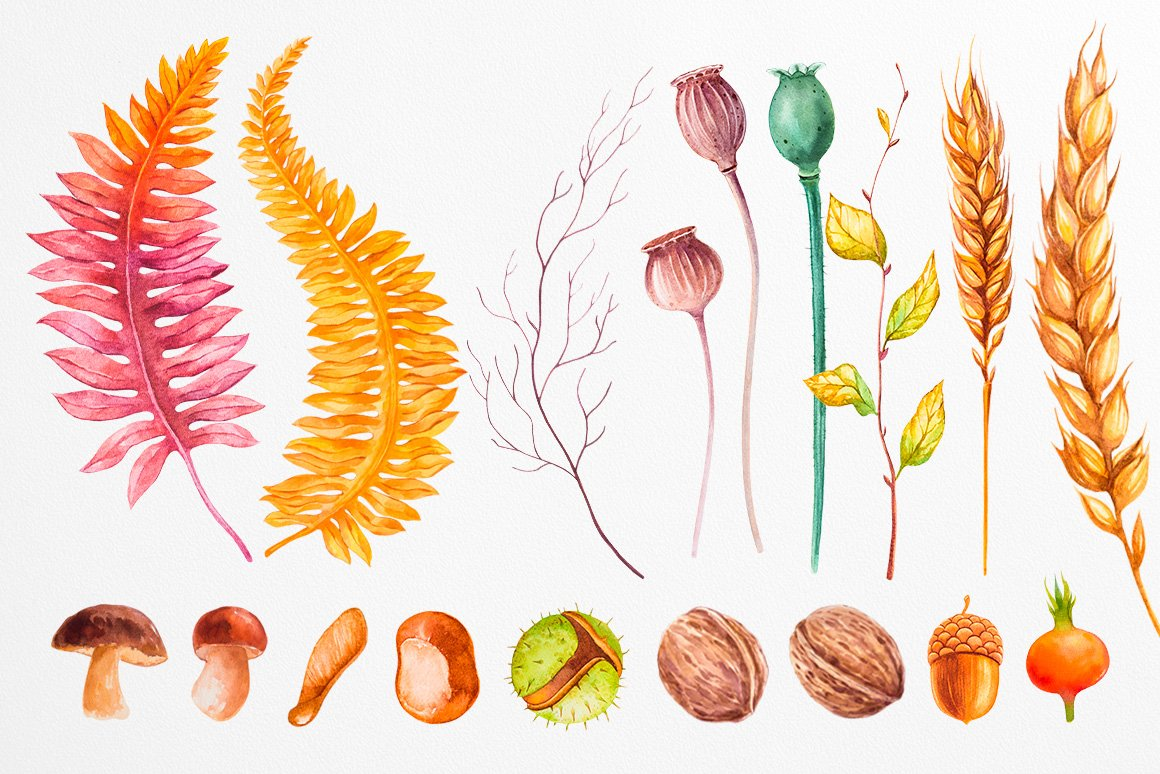 Fall collection. Watercolor. example image 9