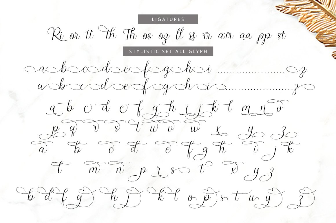 Richardo Script example image 8