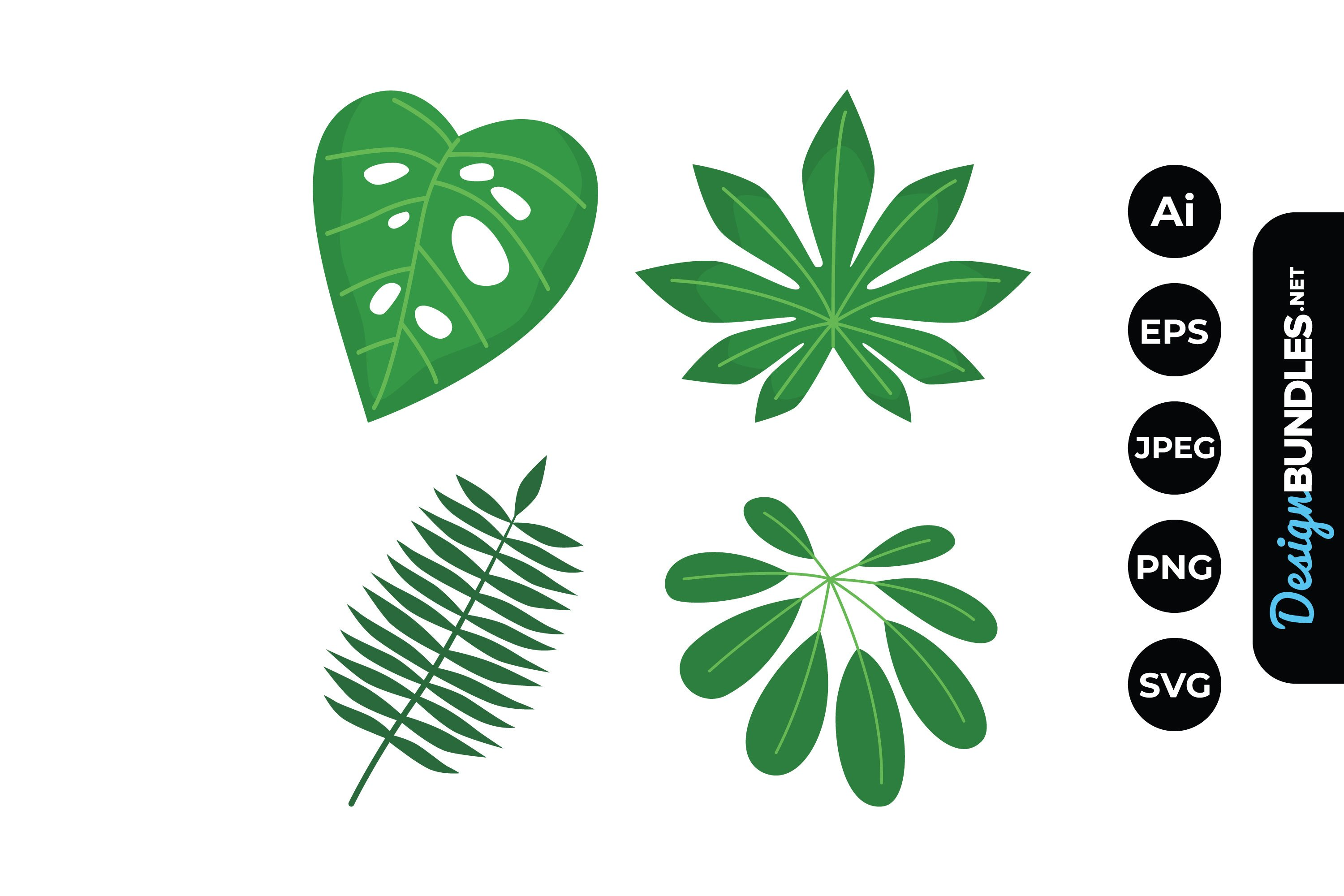 Tropical Leaves Illustrations example image 1