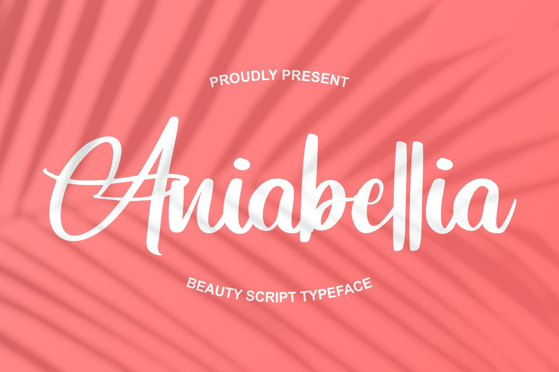 Aniabellia   Beauty Script Typeface example image 1