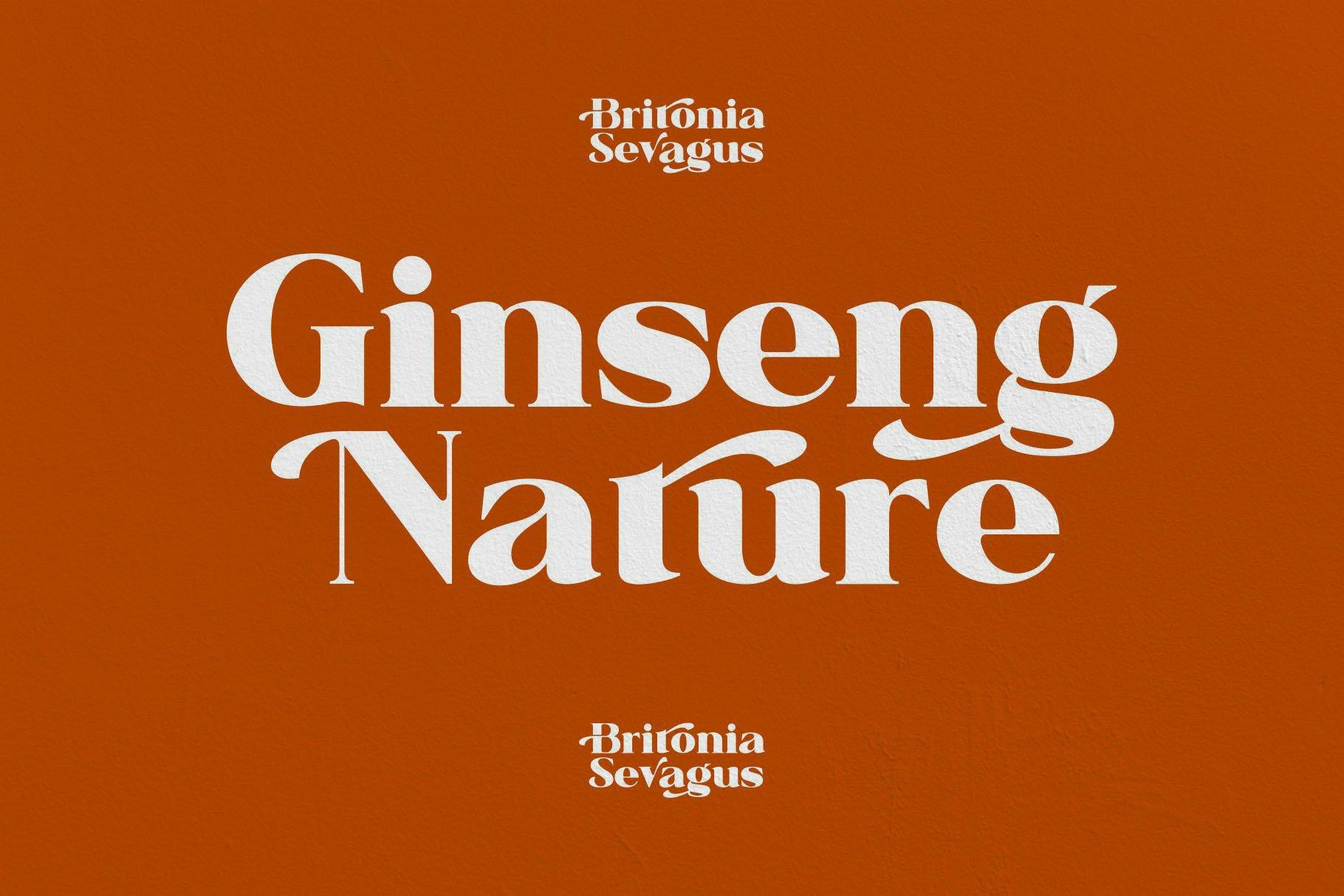 Britonia Sevagus example image 2