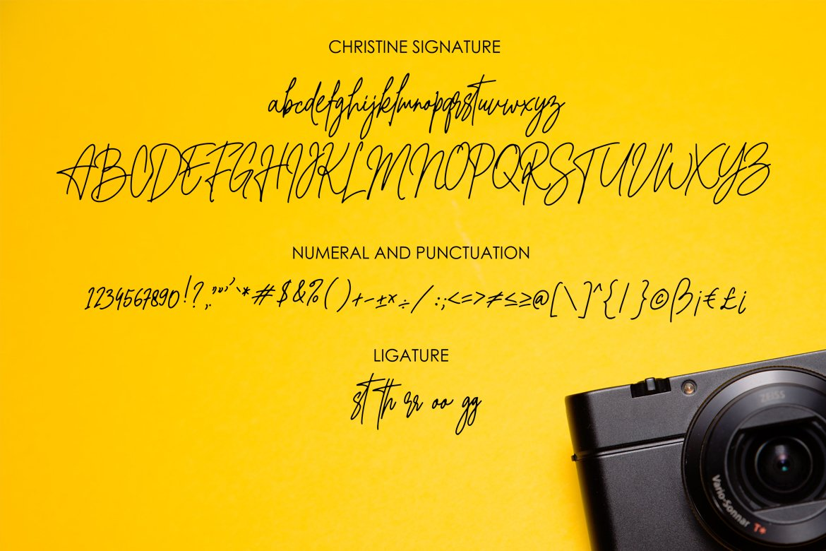 Christine Signature example image 6