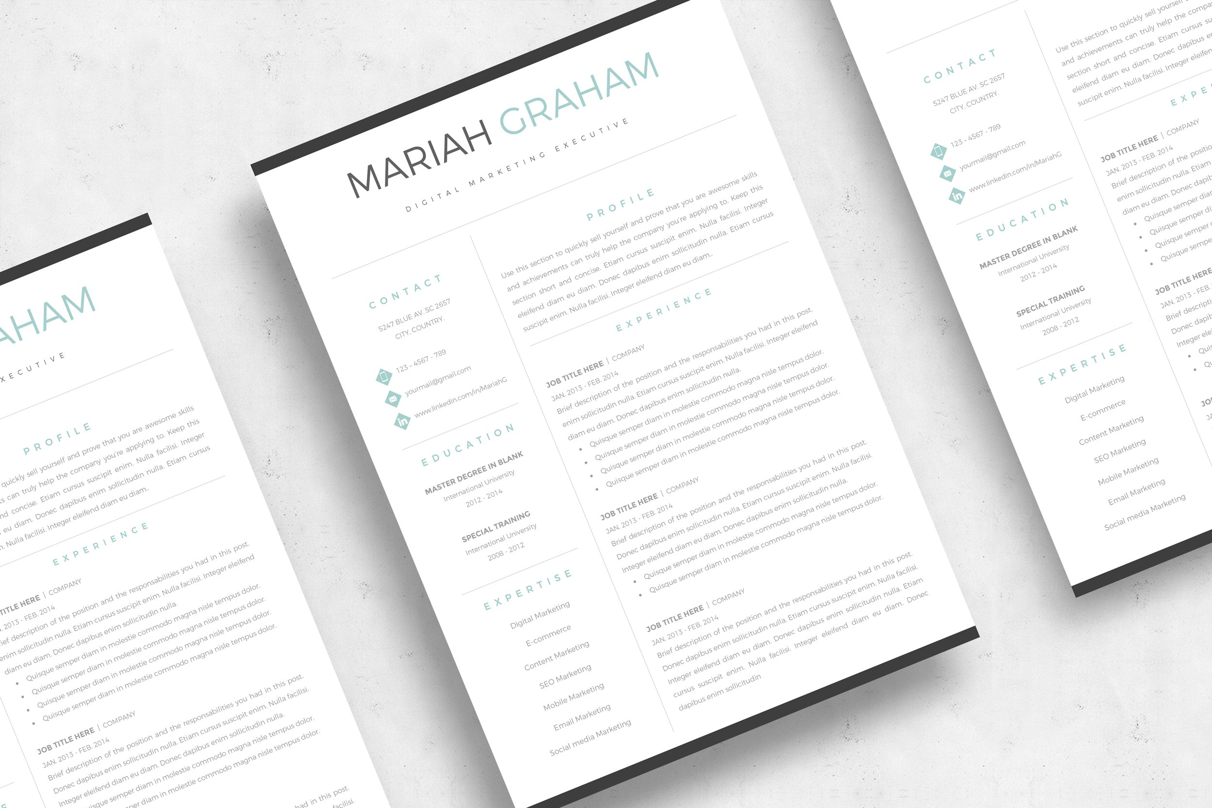 professional resume template  u0026 cover letter  us letter