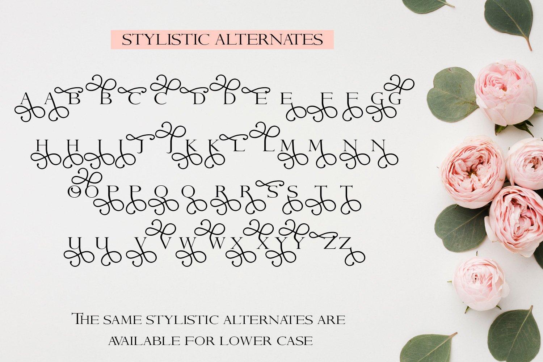 Aurora - A Stylistic serif font example image 3