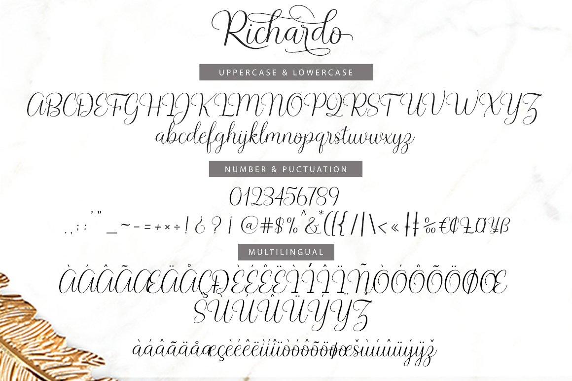 Richardo Script example image 7