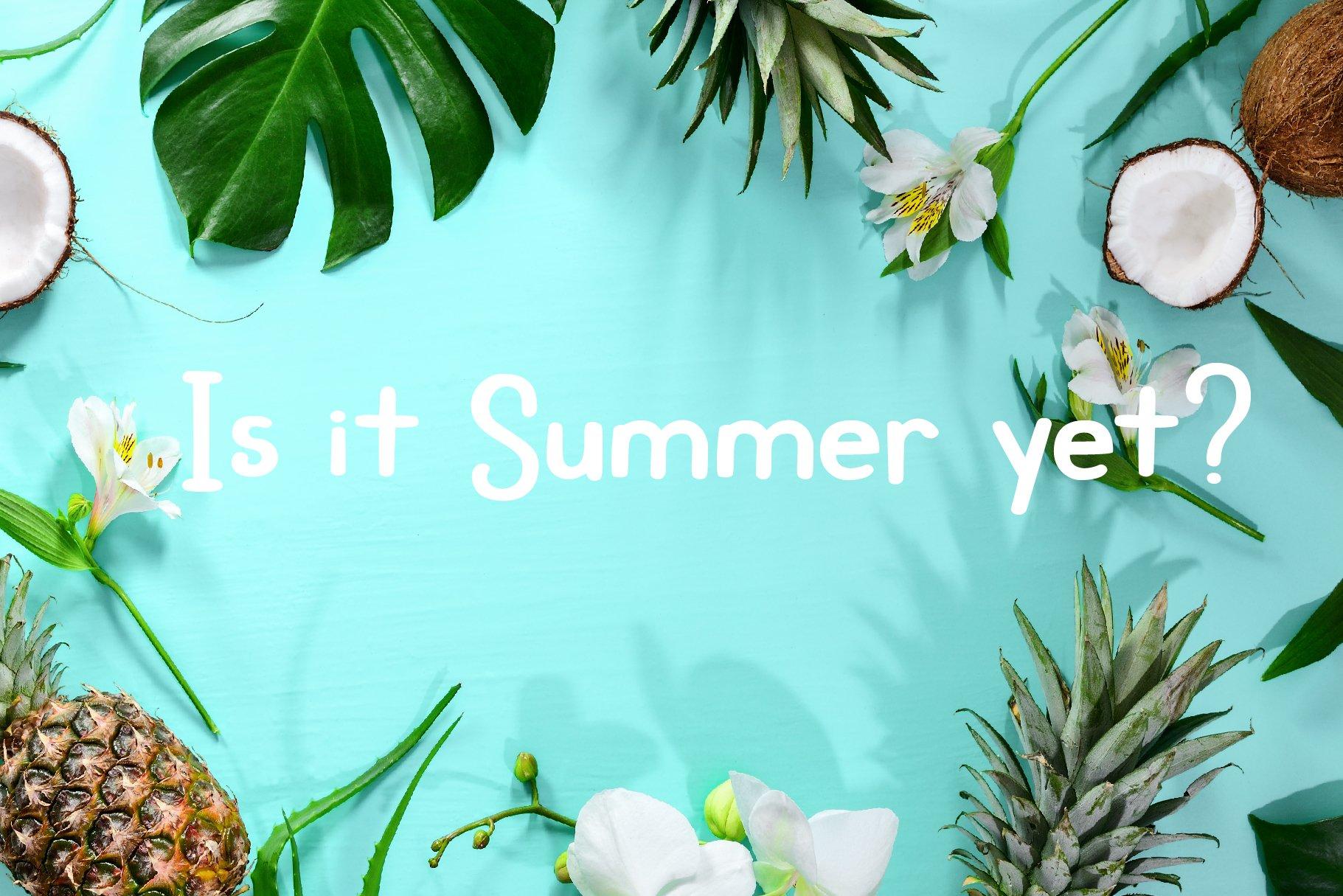 Roadside Pineapple Font Duo example image 8