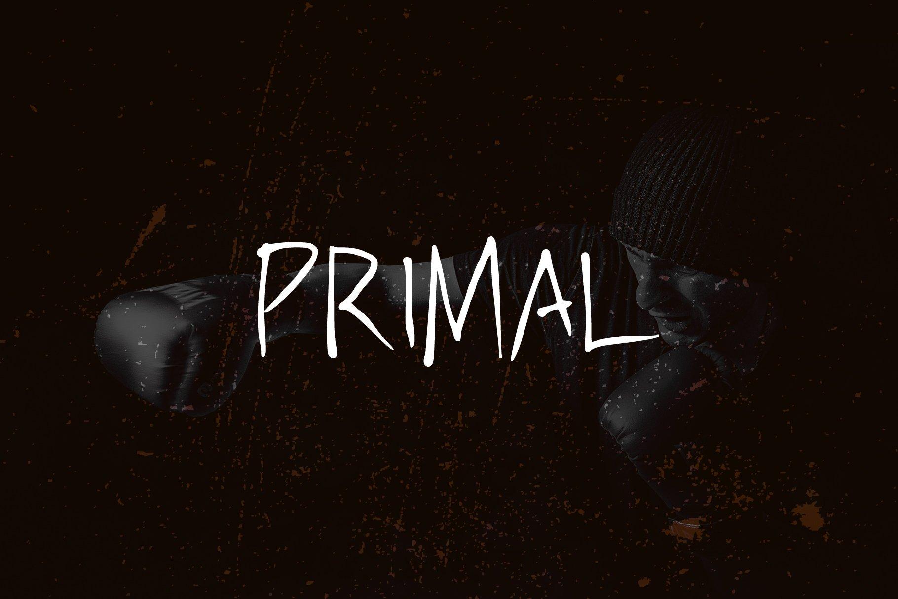 PRIMAL - handwritten brush font example image 2