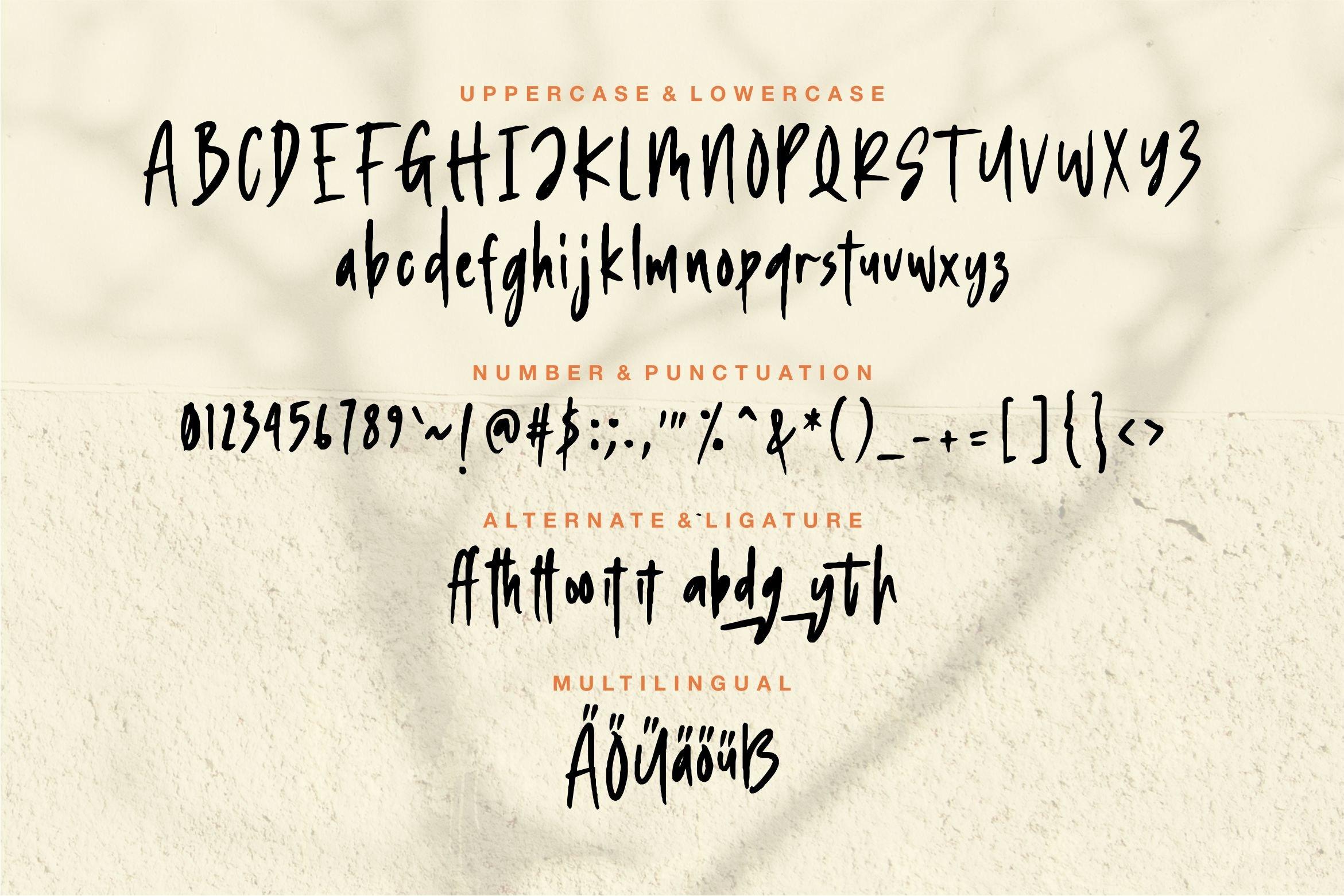 Duetrich - Handwritten Font example image 6