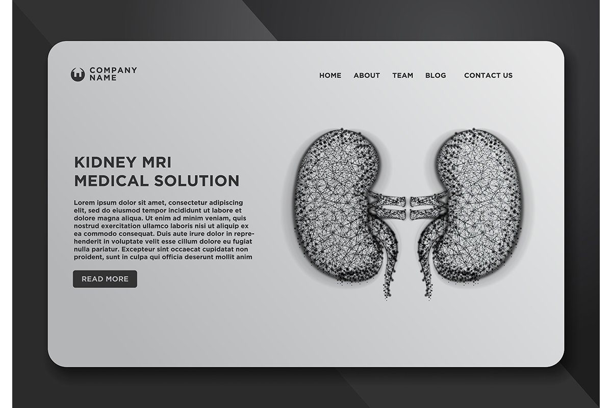 Web page design templates collection of kidney human renal r example image 1