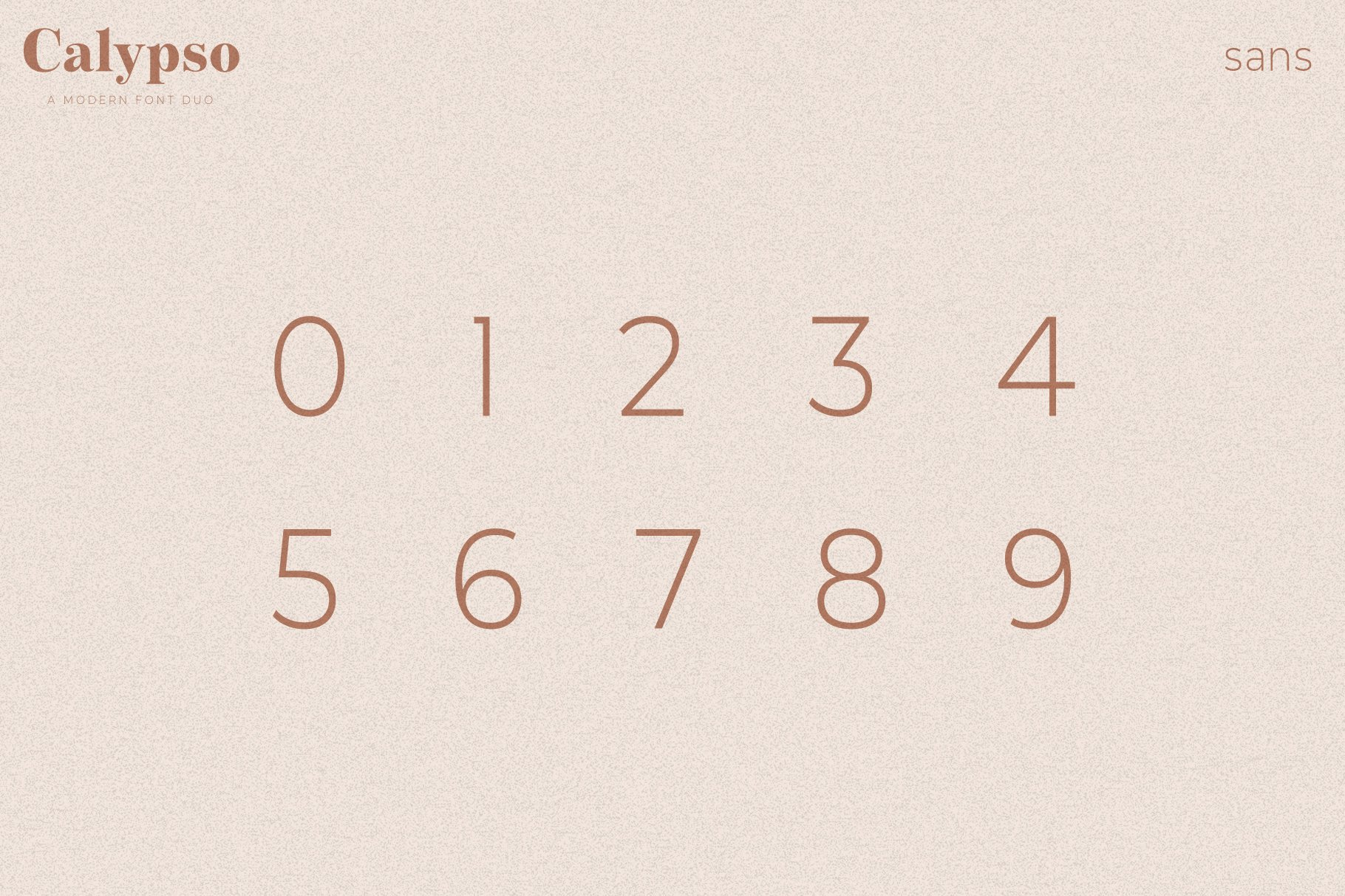 Calypso // A Modern Font Duo example image 19