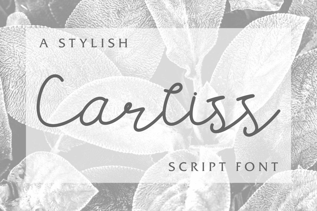 Carllis example image 2