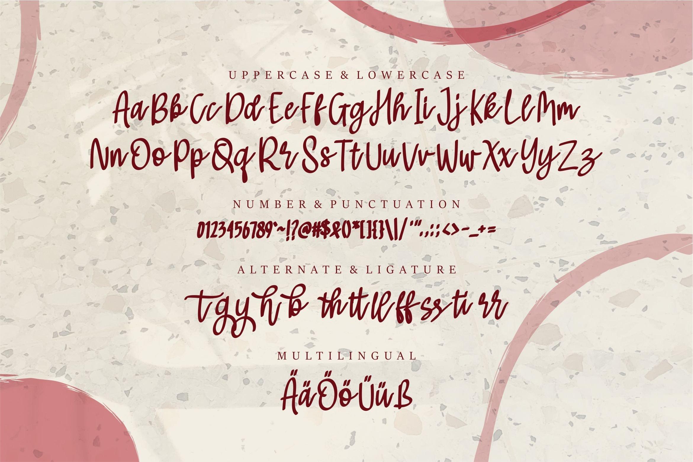 Sophia - Beauty Script Font example image 6