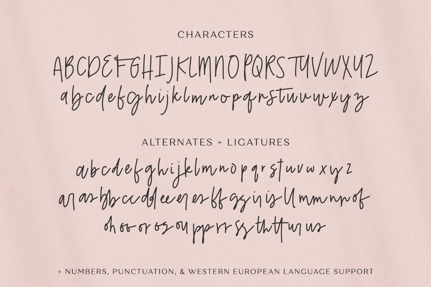 Belovedly Signature Script Font example image 10