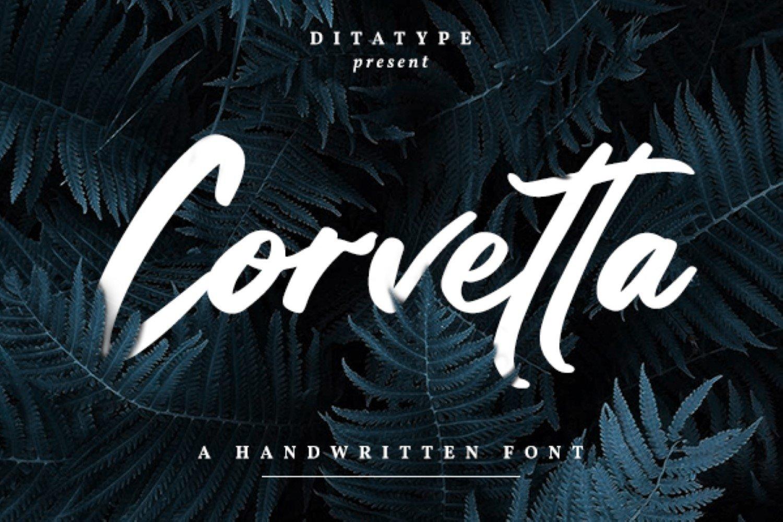 Corvetta example image 1
