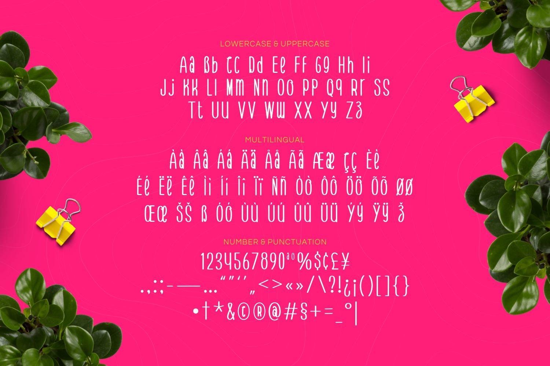 Aura Lopes - Playful Display Font example image 5