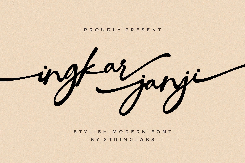 Ingkar Janji - Stylish Script Font example image 1