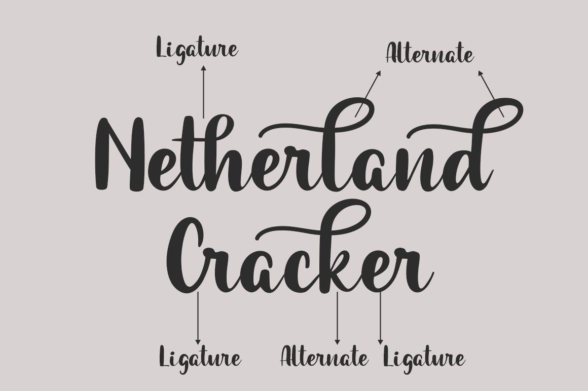 Netherland Cracker example image 2