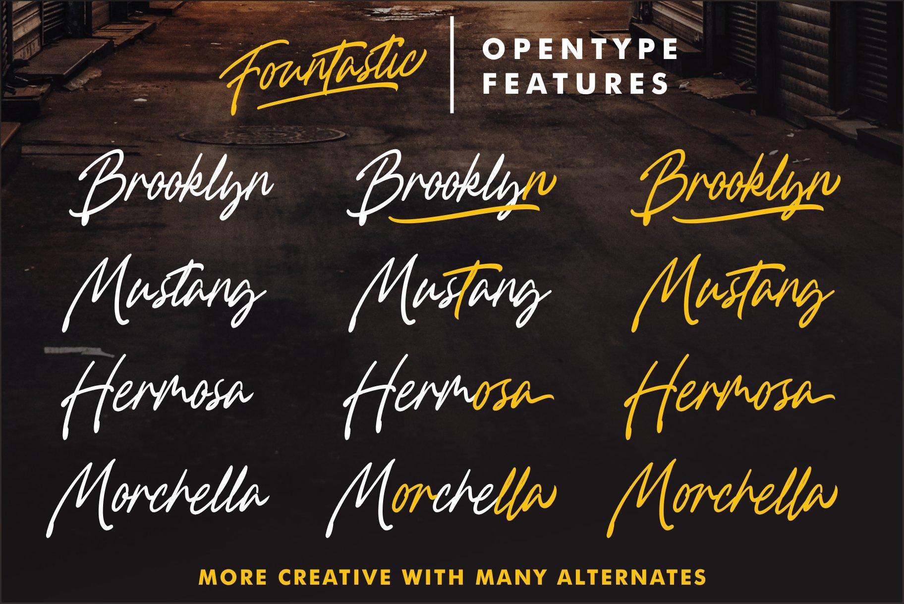 Fountastic Script Typeface example image 2