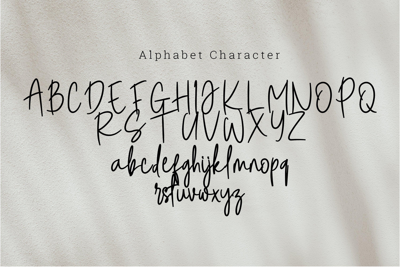 Steam danglem signature Font Script example image 4