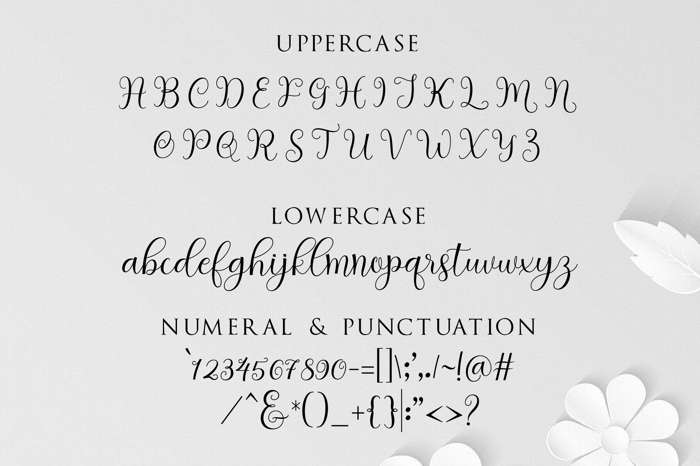 clara script example image 12