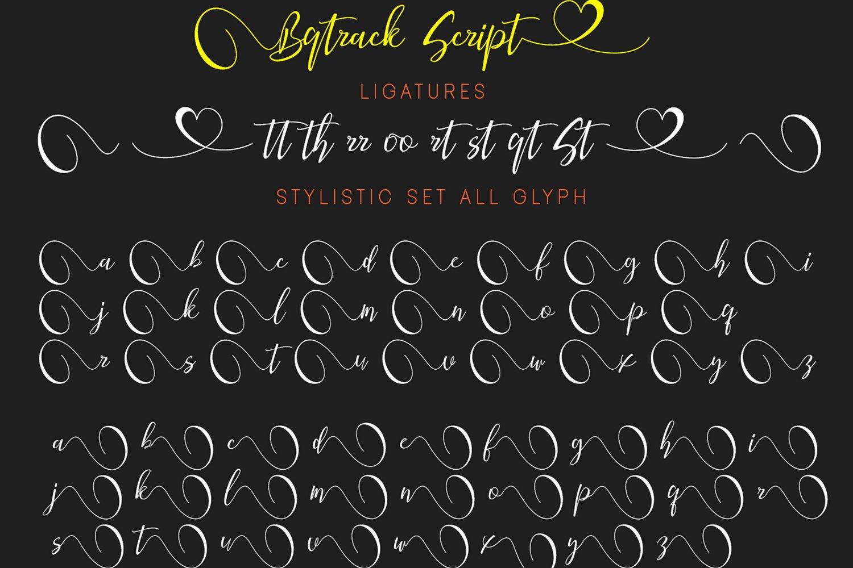 Bqtrack Calligraphy Script Font example image 2