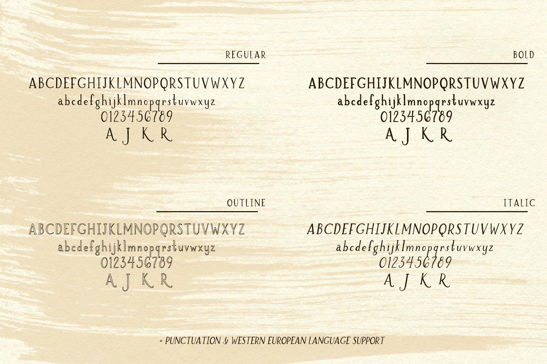 Brioche Rustic Serif Font Family example image 10