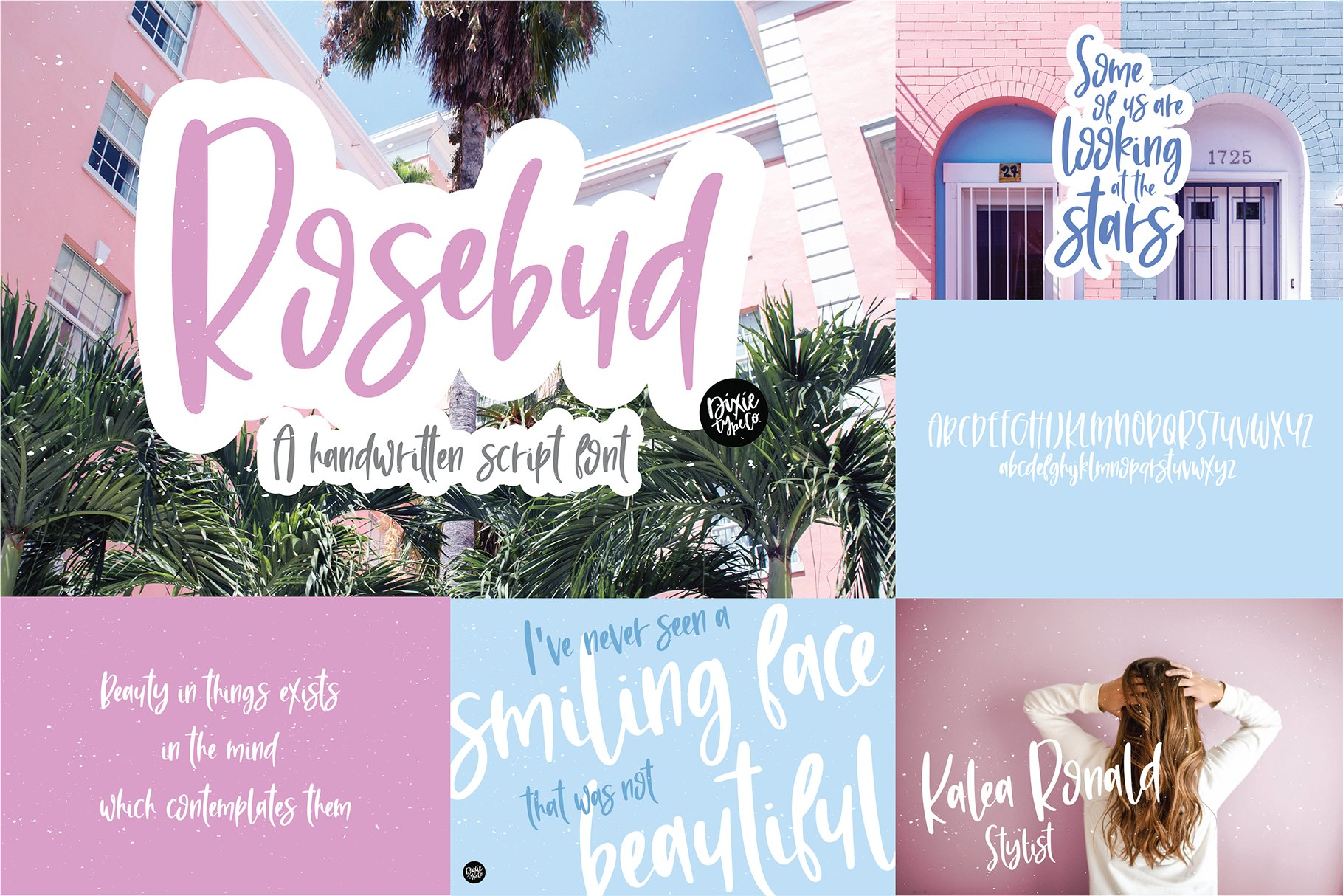 Hand Lettered Font Bundle by Dixie Type Co. example image 8