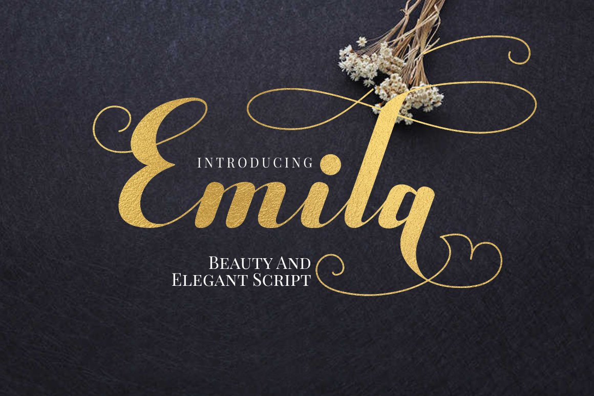 Emila example image 1