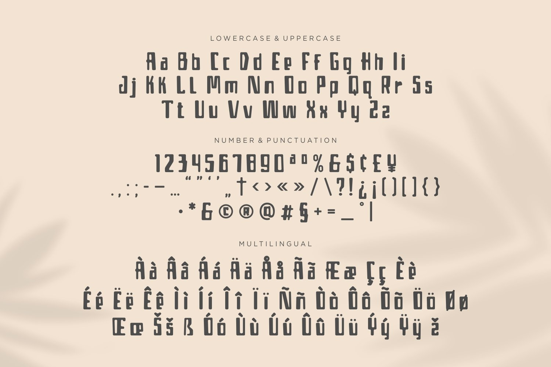 Borjue - Summer Display Font example image 3