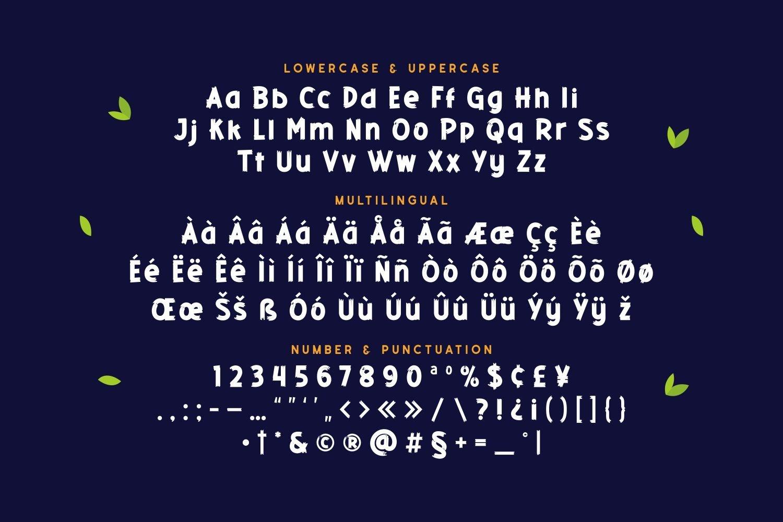 Ontela - Playful Display Font example image 5