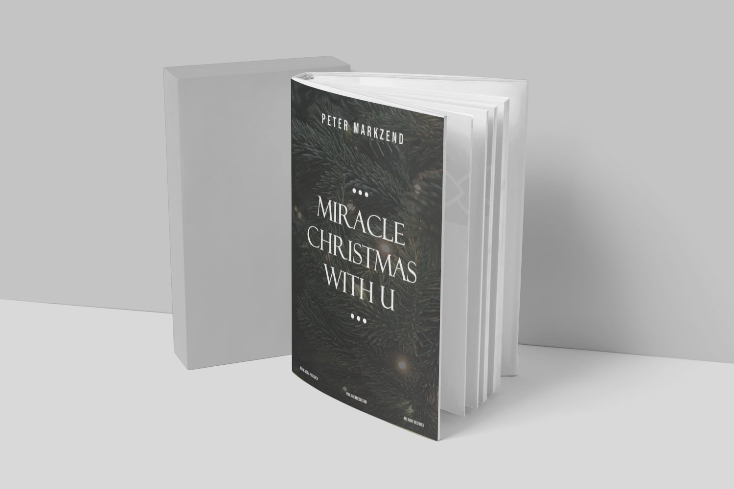 Miracles Christmas With You Book Cover example image 2