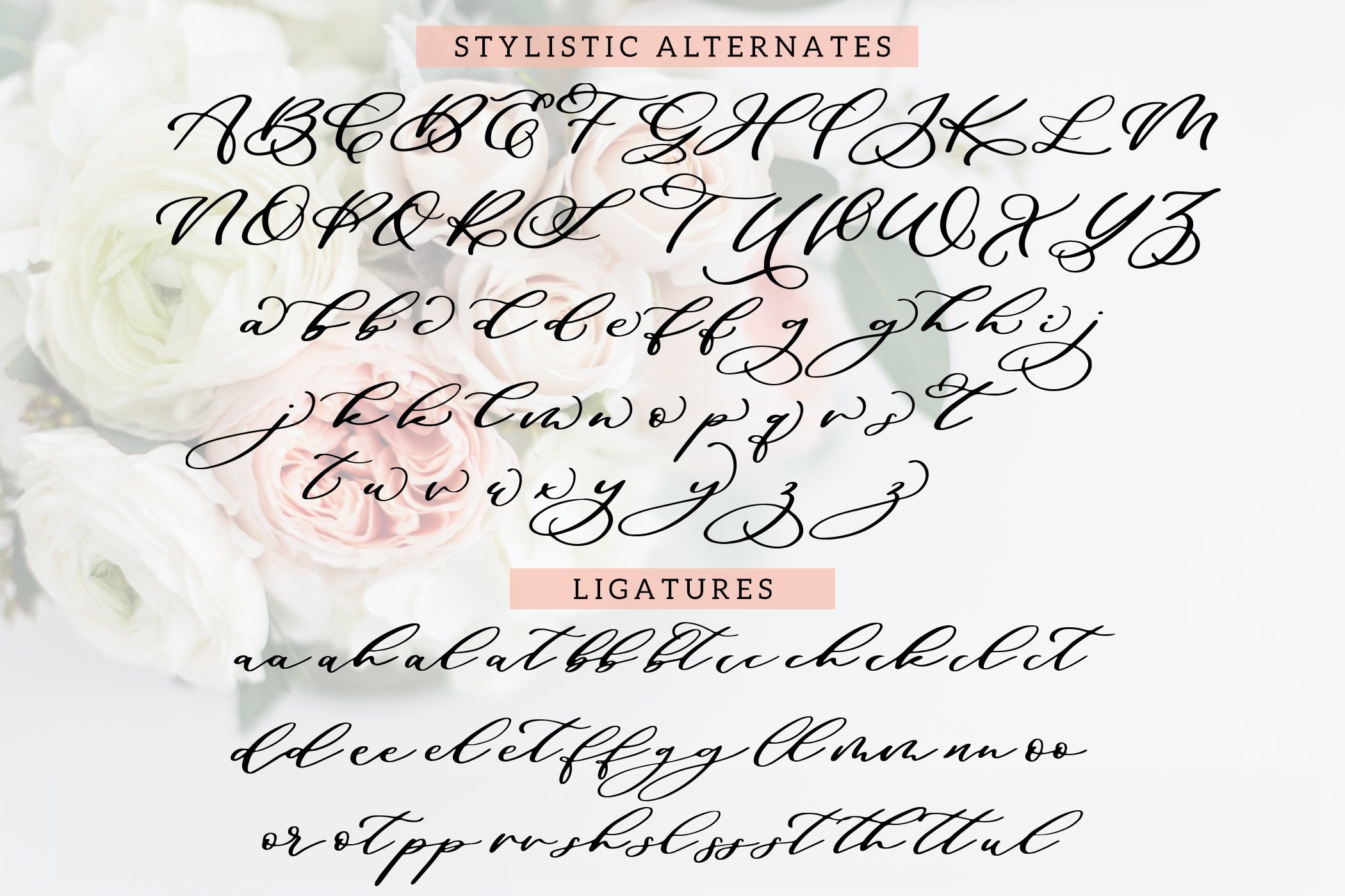 Maid Of Honor - A script font with matching doodles example image 3