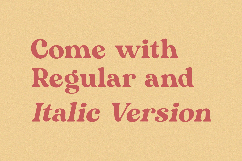 Mogena - Modern Serif Font example image 7