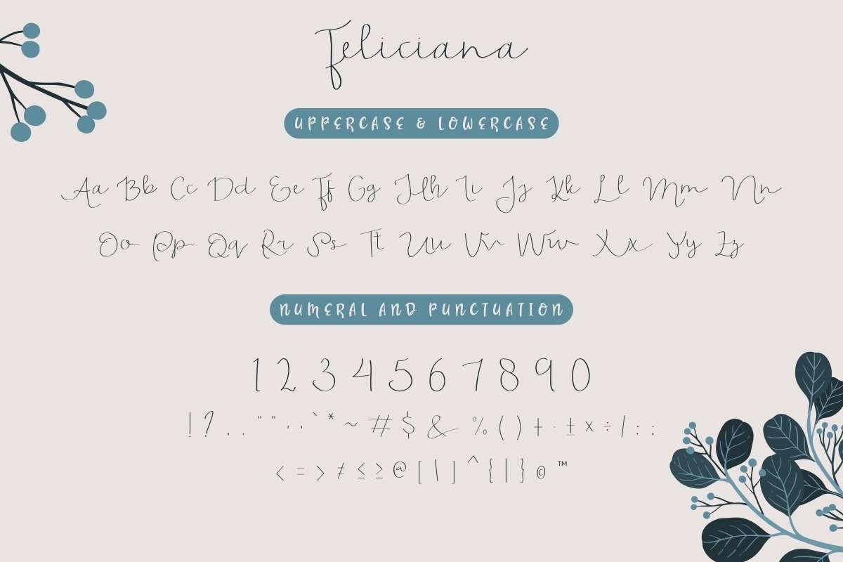 Feliciana example image 5