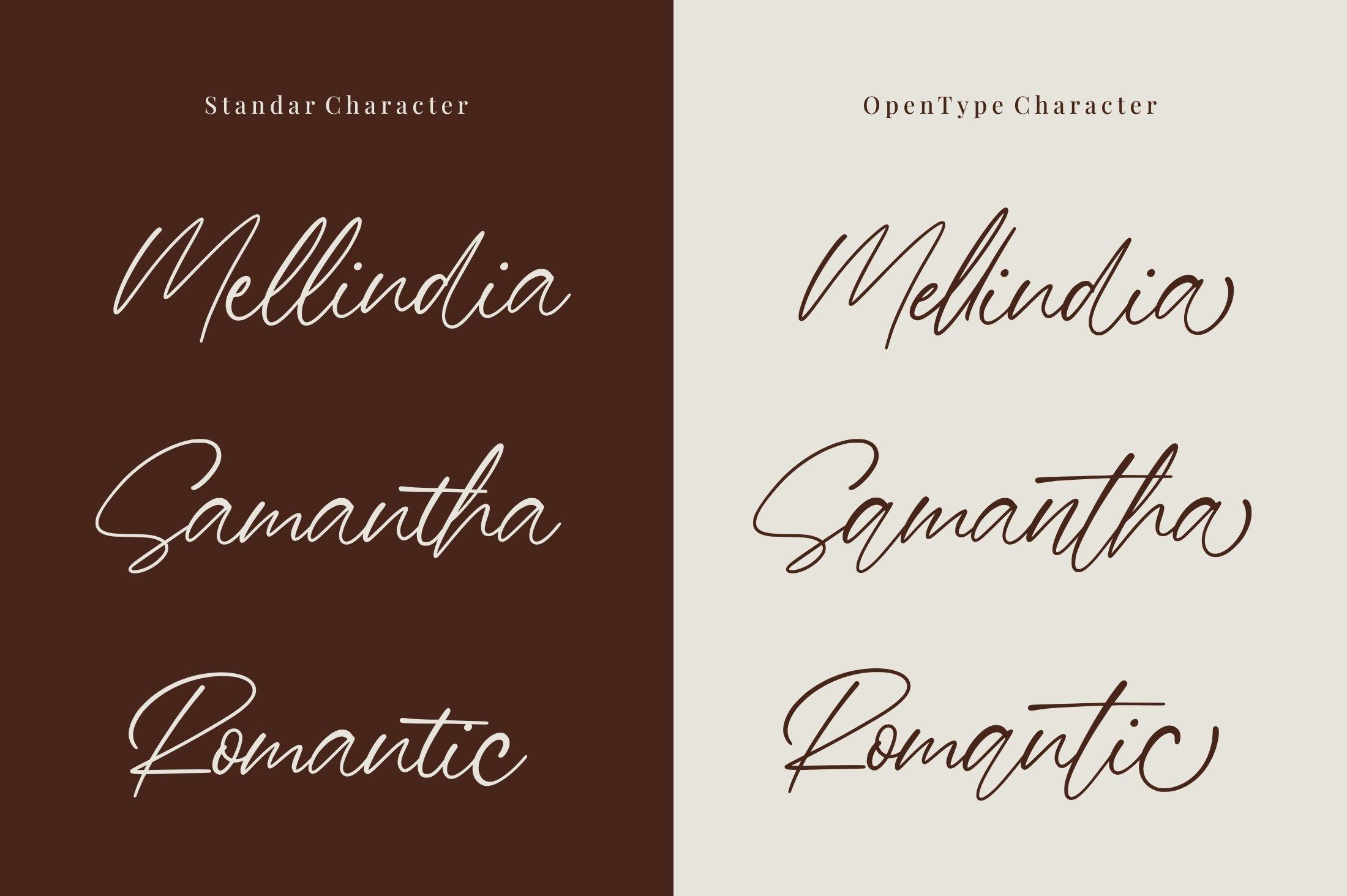 Barnett - Signature Font example image 9