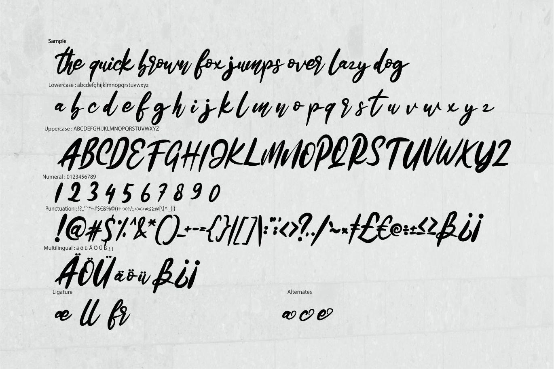 Kaduta | Dancing Script Font example image 6