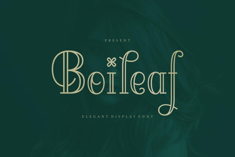 Boileaf - Elegant Display Font example image 1