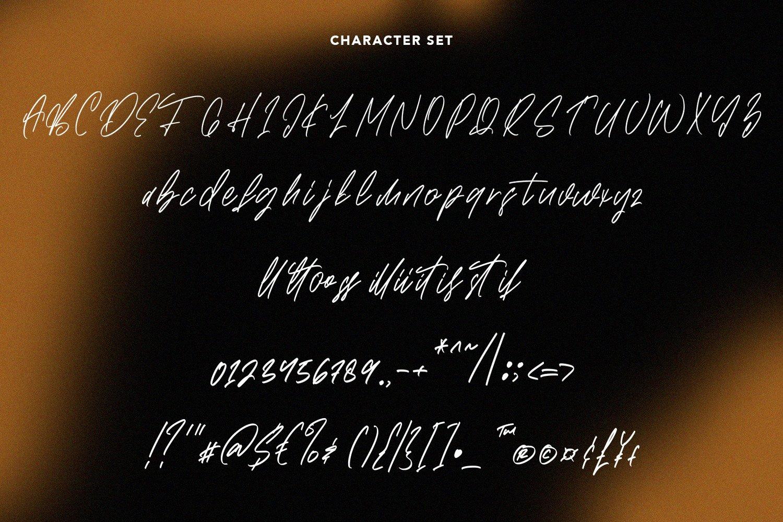 Brushwood - Signature Script Font example image 6