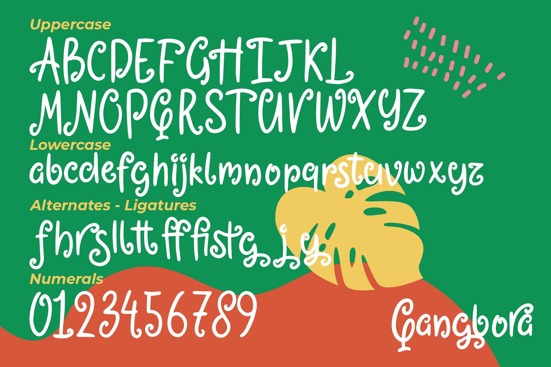 Qangbora - Swirled Fancy Fonts example image 5
