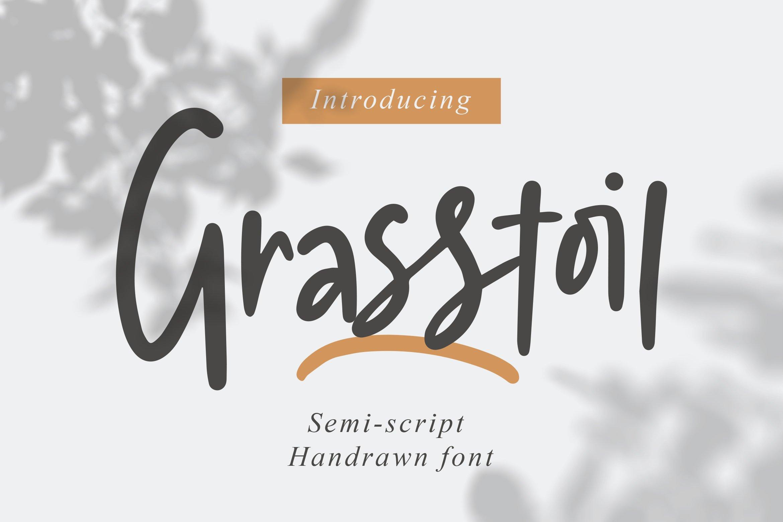Grasstoil - Handwritten Fonts example image 1