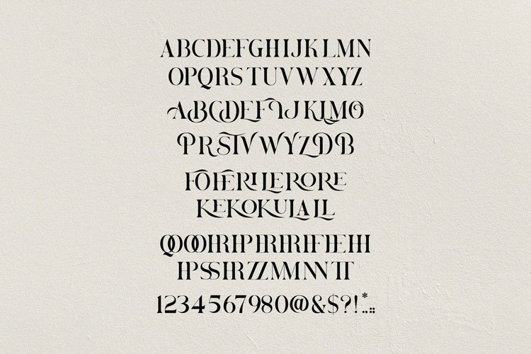 Brovile. A Classy Serif example image 11