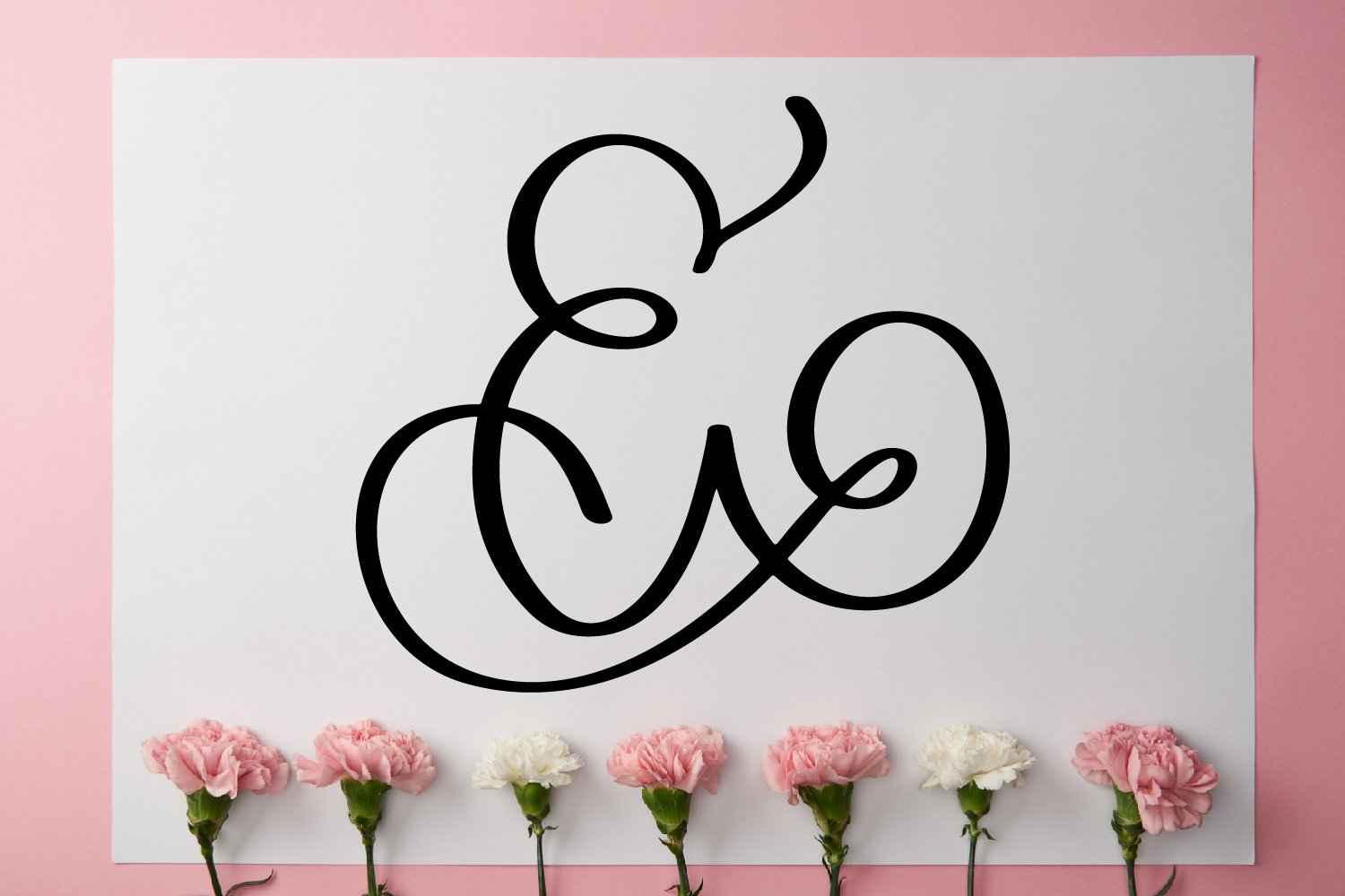 Monogram Letters Font - Swoosh-y Beautiful Hand Lettered example image 3